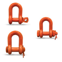 Midland Chain Shackles