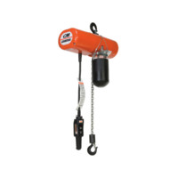 Electric Hoists: Lodestar Electric Chain Hoist With Variable Frequency Drive