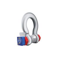 Wireless LoadshackleTM—Shackle Load Cell
