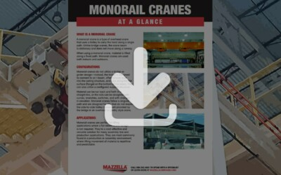 Monorail Cranes At A Glance Guide