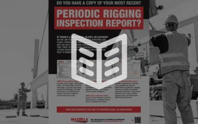 Periodic Inspection Reports: Literature