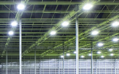 Is an Industrial LED Retrofit Right for Your Facility?: Industrial LED Lighting