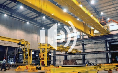 Modular Cranes vs. Process Cranes: Which is the Best for your Business: Podcast