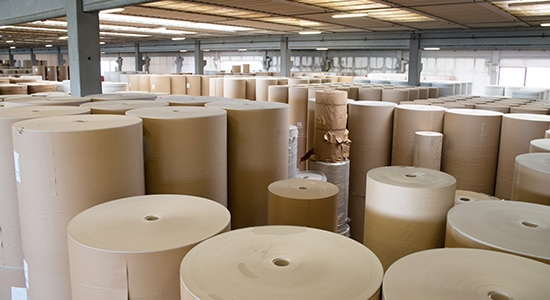 Mazzella Serves Paper Mill Industry