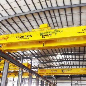 Process Cranes